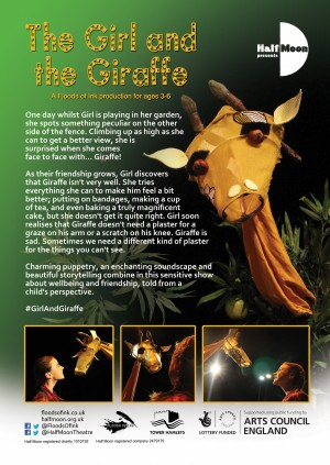 The Girl and the Giraffe, flyer back