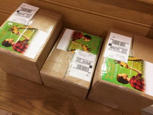 Boxes of The Girl and the Giraffe marketing materials