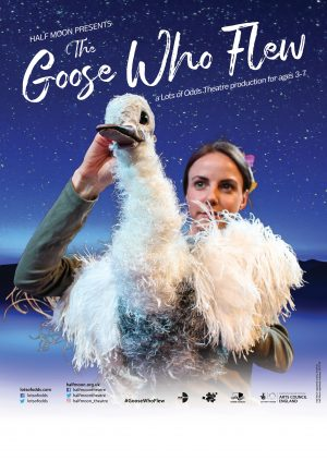 The Goose Who Flew poster