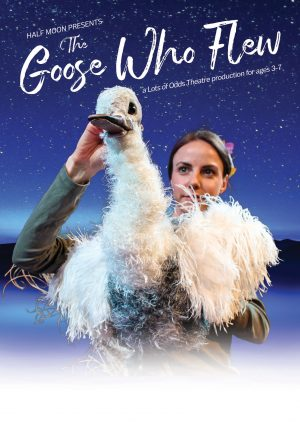 The Goose Who Flew flyer
